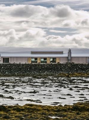 Norður Salt – 2012